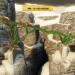『BRIDGE CONSTRUCTOR(ブリッジ・コンストラクタ)』重量や物理法則を考慮しながら橋を架けるシミュレーションゲーム!