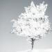 『脱出ゲーム 忘れ雪』謎解き以上に壮大な物語に感動する無料ゲーム